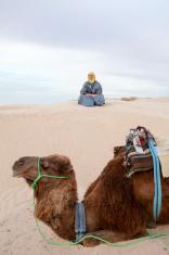 Caucasian man sitting on sand dune in desert with camel