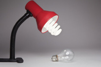 Energy Saving Lamp and Old Bulb