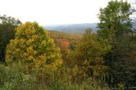 blue ridge autumn 3