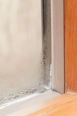 Condensation on Winter Window