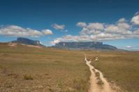 Path to the Roraima plateau. Venezuela