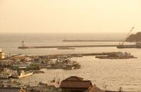 fish port in Japan