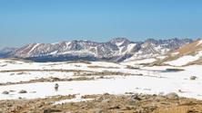 Hiking Adventure in the Sierra Nevada