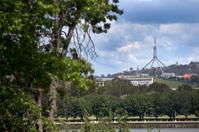 Parliament in bush