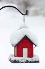 Snow covered red bird feeder
