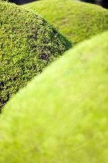 Spherical Hedges