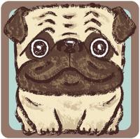 Pug square