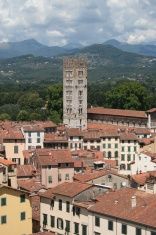 Rooftops of Lucca