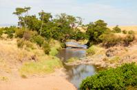 River in Masai Mara