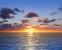 Blue tropical sunset dawn