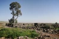Ruins of Saint Gregory church at Gamla, Israel