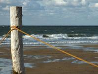 Wooden Pole on beach