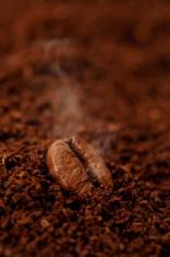 Freshly roasted coffee bean