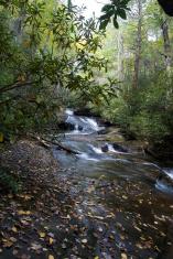 Backwoods water cascade