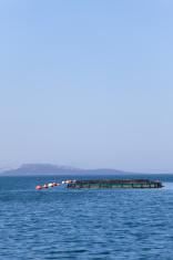 fish farms at coast of bodrum mugla turkey
