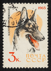 Soviet Russia Postage