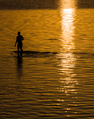 Coral Fishing at Dawn