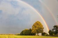 rainbow in rural setting