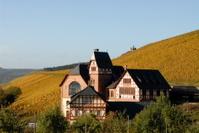 wine-growing-Estate Aveler Tal, Trier