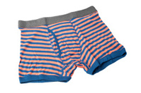 striped male underwear boxers isolated on white background