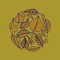 Hand drawn leaf design