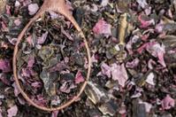 Assorted dried seaweed
