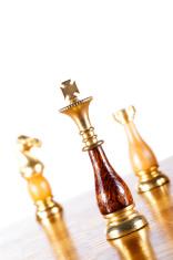 Chessmen on the Chessboard
