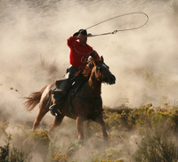 Lone rider at the gallop throwing lassoo