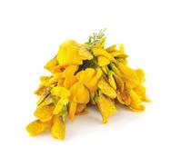 Sesbania grandiflora edible flowers