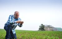 Farmer in a crop field