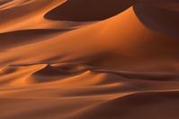 Sand dunes, Sahara Desert