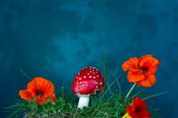 Mushroom and flower