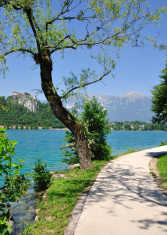 Hiking Trail around Lake Bled,Slovenia
