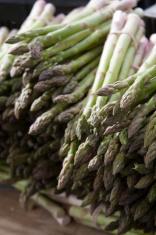 Stalks of Organic Asparagus