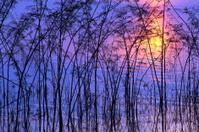 colour of sky