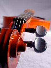 Violin Neck