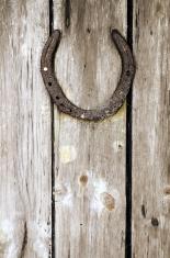 Horseshoe On Wooden Plank Door