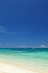 Beach on summer