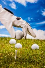 Sunny golf field with sport stuff