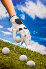 Professional golf stuff with grass