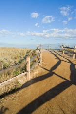 Beach Path III