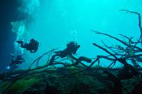 Cenote underwater