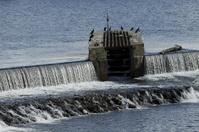 Weser barrage in Hameln