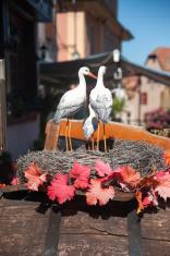 Dambach la Ville Alsace town