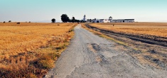 Road to a farmhouse