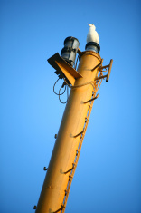 Seagull on mast