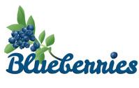 Blueberries typographic treatment