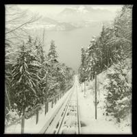 Niederhorn bahn and Montain Railway