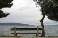 Seaview bench