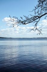 Water of Juglas lake in Riga, Latvia